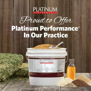 Proud to Offer Platinum